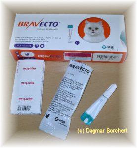 Bravecto gegen Flöhe und Zecken bei Katzen