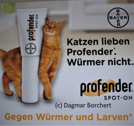 Profender Katzenlexikon