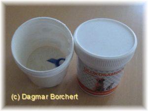 Glukosaminol gegen Blasenentzündung bei Hunden und Katzen