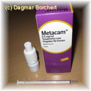 Metacam - Schmerzmittel für Hunde und Katzen